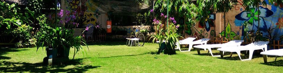 Our garden and lawn is a good place to have mud pack, sunbathe and other treatments. It is also ideal for fun activities and games. Though our property is small it is rich in foliage and vegetation.