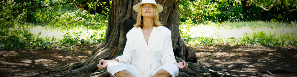 Getting to the Root Cause of Disease - Ananda Marga Yoga Wellness Center